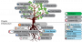 resources:eval:sdg_tree.png